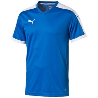 Puma Trikot Pitch Shortsleeved Shirt royal-weiß